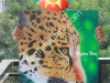 leopard-painting-acrylic-on-canvas-board-meghna-unni
