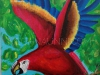 macaw-painting-gifted-to-giridarshini