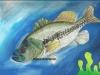 fish-art-contest-2013-small1