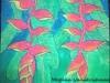 heliconia-plant
