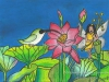 lotus-fairy