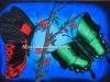 titlee-butterfly-2013