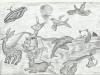 animals-around-the-world-blueline
