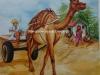 camel-on-village-road-meghna-unni