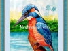 kingfisher-water-colour-painting-meghna-unnikrishnan
