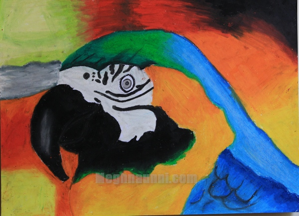 Devbhoomi Painting Competition 2012