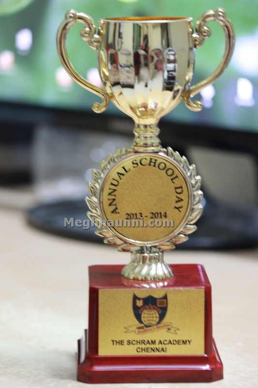 special achievement award trophy