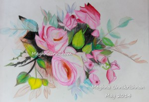 Roses – Pencil Colour Work by Meghna