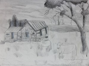 'Cattle Grazing' Pencil Shading