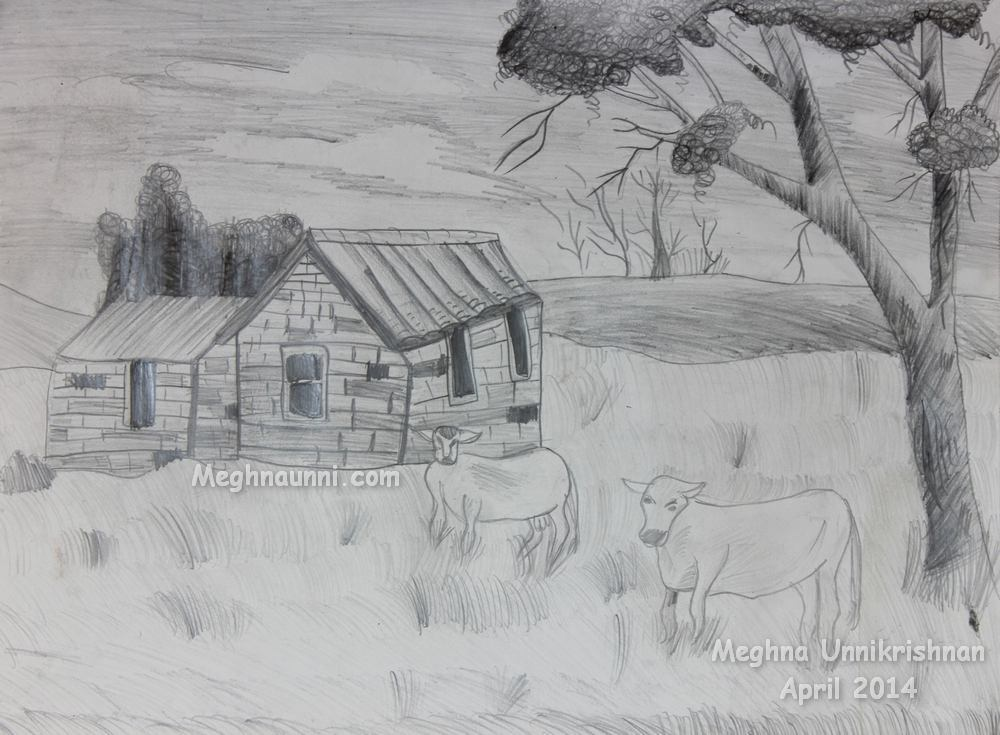 cattle-grazing-pencil-shading