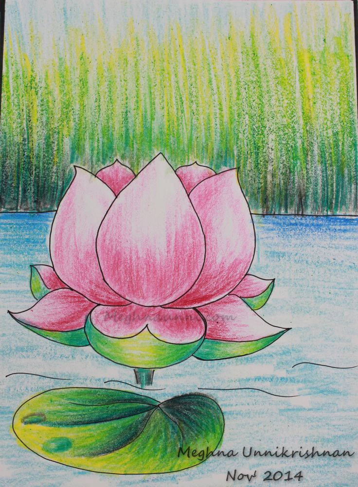 'Lotus' Flower Painting using Plastic Crayons