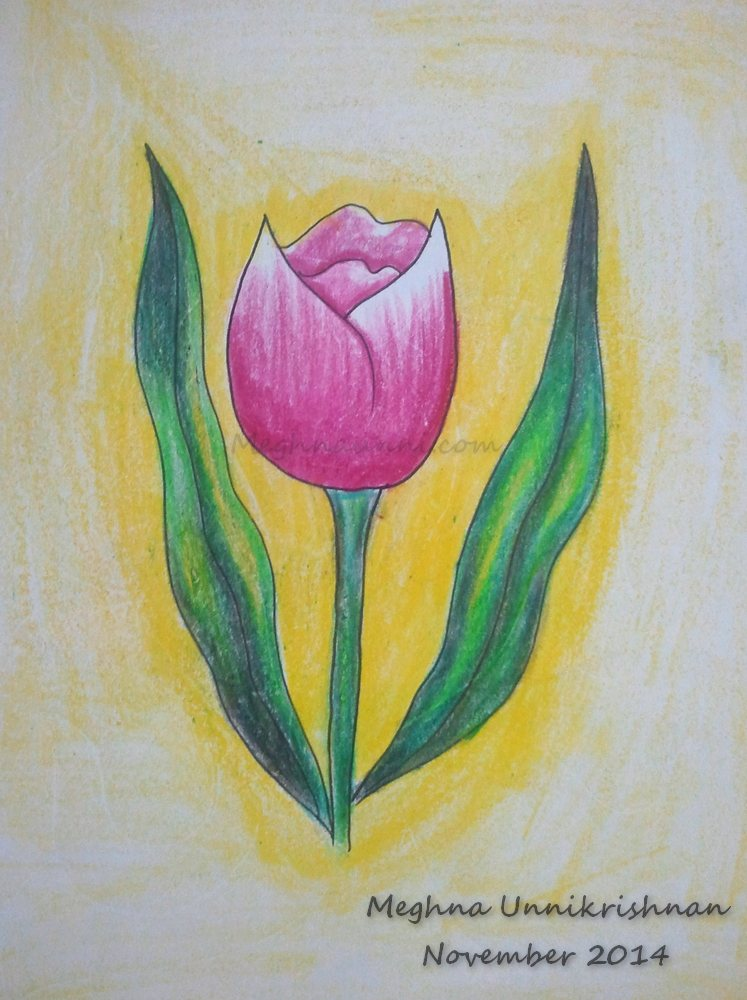 'Tulip' Flower Painting