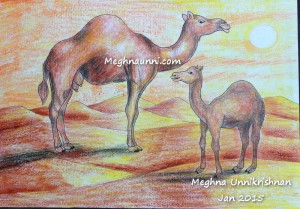 Camels Painting with Plastic Crayons