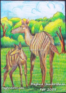 Striped Deer Painting Medium Plastic Crayons