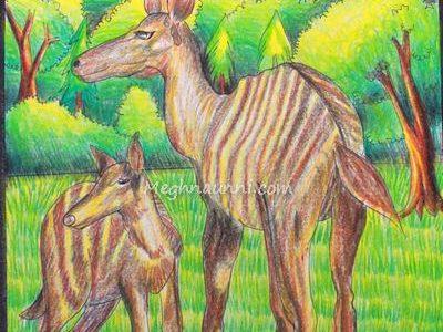 Striped Deer Painting Medium Plastic Crayons