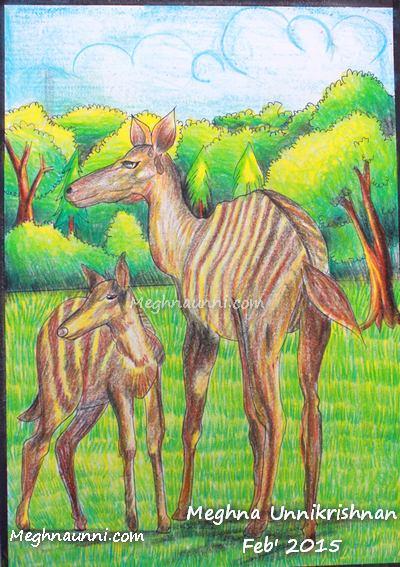 Striped-Deer-by-meghna-unnikrishnan