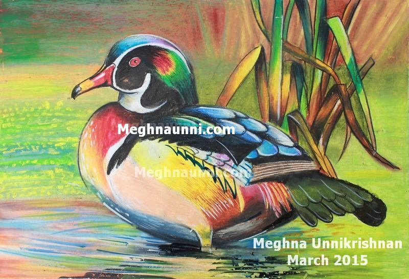 Mandarin Duck Painting in Oil Pastels