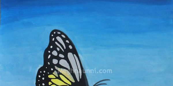 Butterfly Painting – Poster Colours