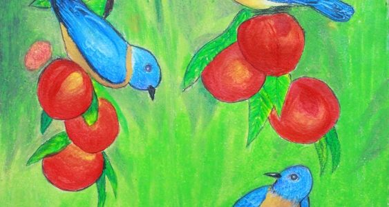 My Gift to Chittamma… Birds & Fruits Painting