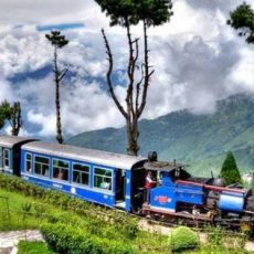 Visit to a Tourist Place Short Essay Writing for English | Darjeeling Visit