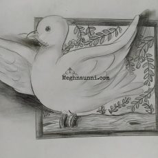 Peace Dove Pencil Drawing