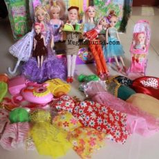 Me and My Barbie Dolls