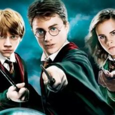WHY ARE THE HARRY POTTER SERIES A MUST-READ?
